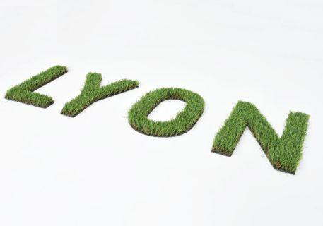 logo-vegetal-synthetique-2